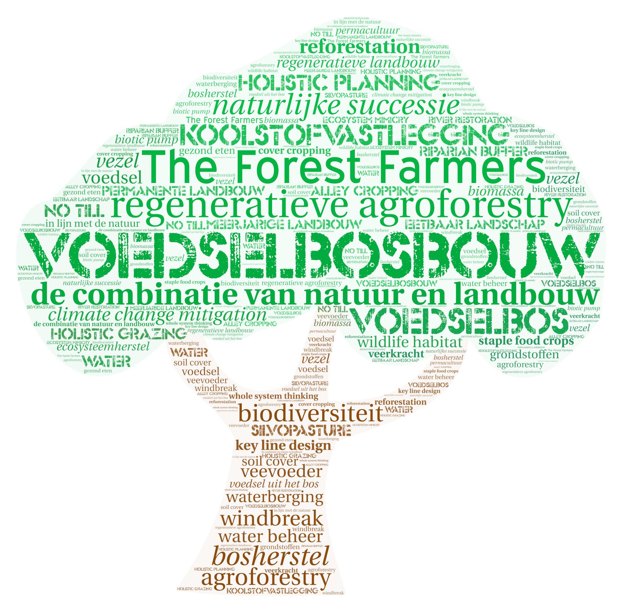 Word Art NL